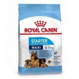Royal Canin (Роял Канин) Maxi Starter сухой корм для щенков крупных макси пород и беременных собак крупных пород