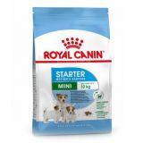 Royal Canin (Роял Канин) Mini Starter сухой корм для щенков мини пород до 2-х месячного возраста и беременных собак