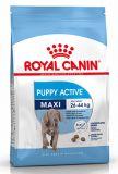 Royal Canin (Роял Канин) Maxi Puppy Active сухой корм для активных щенков крупных макси пород