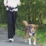 Комплект для бега с собакой Trixie, 1275
