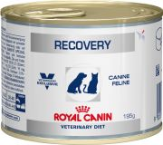 Royal Canin Recovery диета для собак и кошек в восстановительный период после болезни