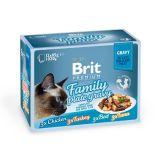 Brit Premium Family Plate Gravy Влажный корм Набор паучей для кошек Кусочки в СОУСЕ 12шт. по 85 г
