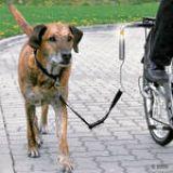 Biker-Set de Luxe Trixie TX-1287